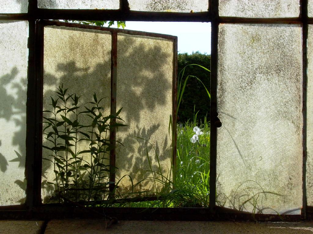 Fenster_web