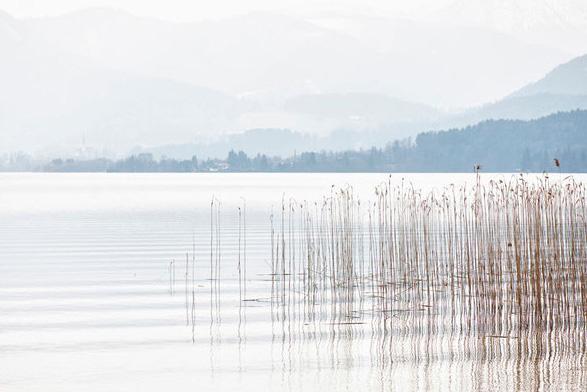 Chris Tille: Tegernsee Fotografie in magischen Momenten - Stile im Nebel