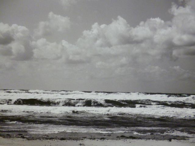 Artehof - Willi Nemski: Migration