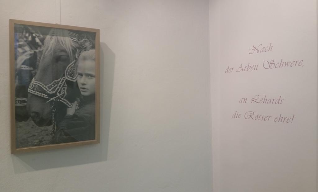 Tobias Hohenacker - Ausstellung im Stadtmuseum bad Tölz