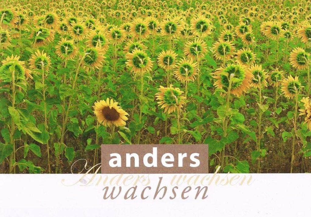 """Die Broschüre """"Anders Wachsen"""" entstand anläßlich der Konferenz """"Anders Wachsen - Alternativen für das Oberland"""" in der Schreibwerkstatt im April 2016."""