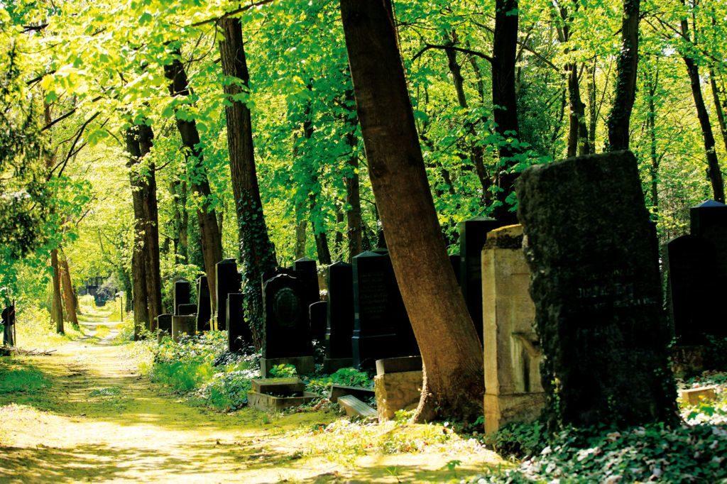 """Der Jüdische Friedhof in Berlin (Filmausschnitt)- Film """"Im Himmel unter der Erde"""" zum Chorwochenende in Miesbach"""