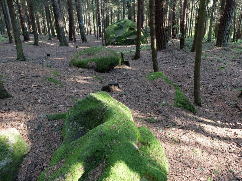 Das mystische Waldviertel - in dem die Romane von Thomas Sautner handeln