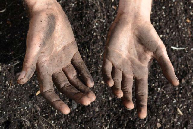 Wild Plants - Mit den Händen die Erde bearbeiten Foto: ©M.Pitteloud.CloseUpFilms