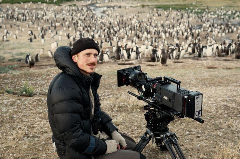 Der Kameramann Rolf Steinmann beim Dreh mit Pinguinen