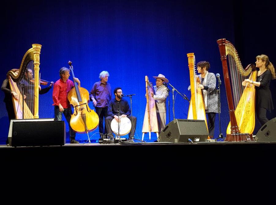 Teilnehmer beim Harfenfestival in Miesbach