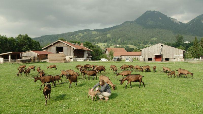 Solidarische Landwirtschaft im Leitzachtal: Bauernhof Haase, Sandbichl, Fischbachau