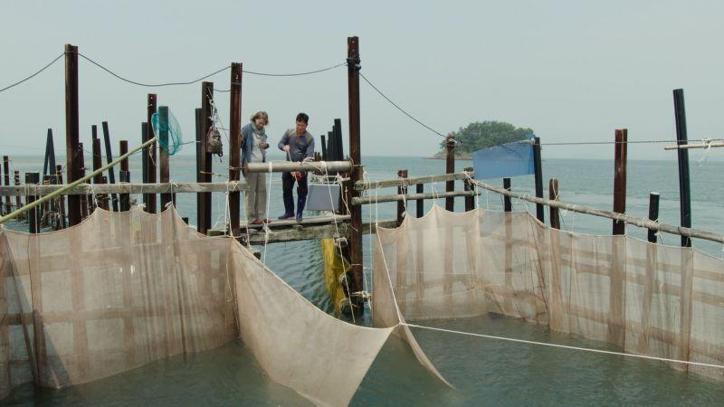 Hansalin: Nachhaltiger Fischer in Korea