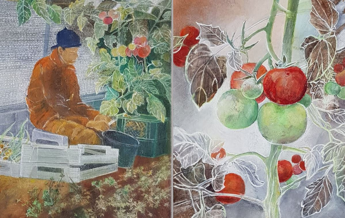 Hilge Dennewitz - Feldsstudien zum Wesen der Pflanzen