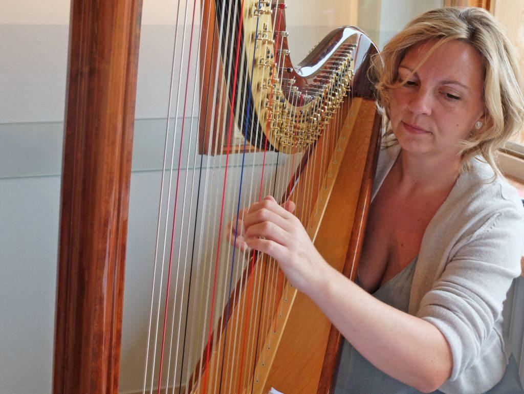 Tannerhof Hofkunst - Vernissage mit Musik: Stefanie Polifka begleitet die Vernissage mit der Harfe