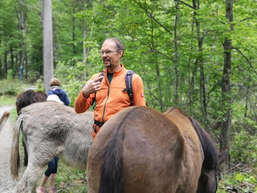 Andreas Vogt erklärt Wissenswertes über Esel. Foto: Ines Wagner