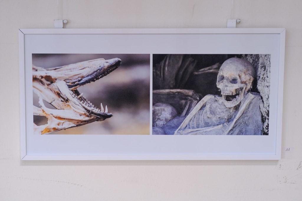 Barbara Kenedi: Triptychon Smile