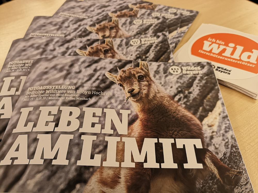 Broschüre Wildes Bayern