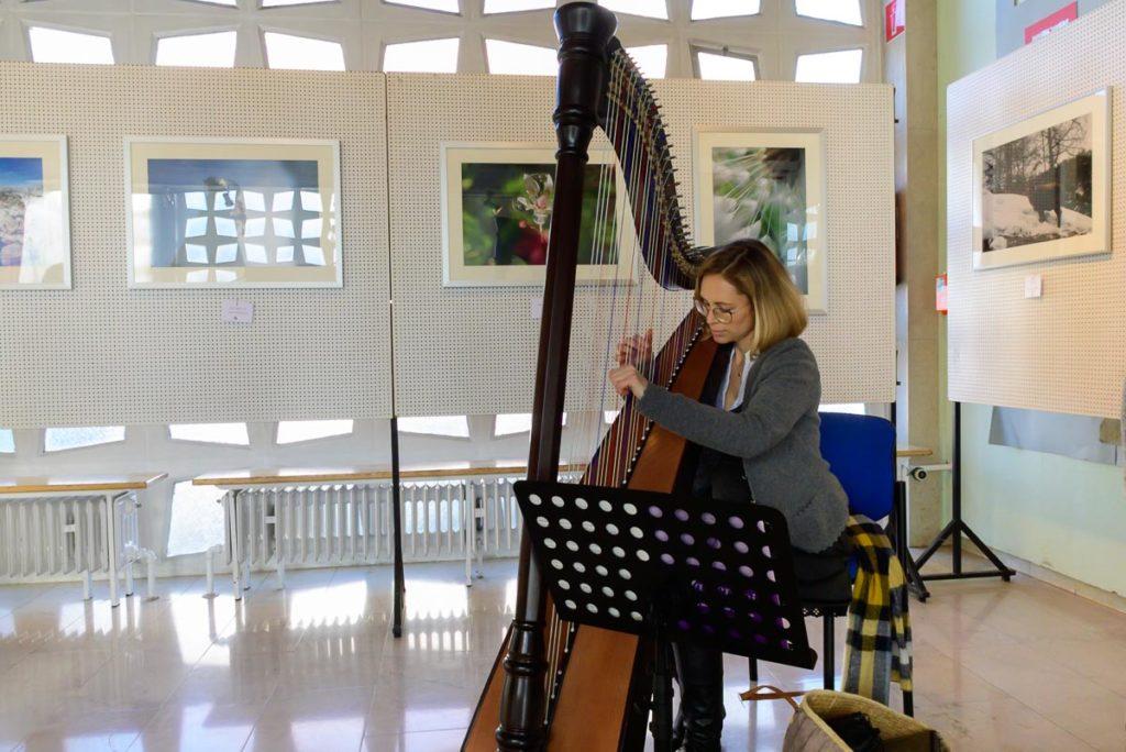 Harfenistin bei der Fotoausstellung in Parsberg