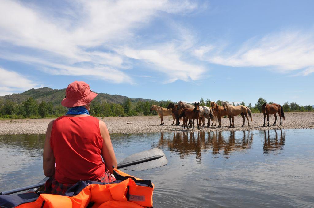 Mongolei mit dem Kanu - Leo und Hermine Purmann unterwegs