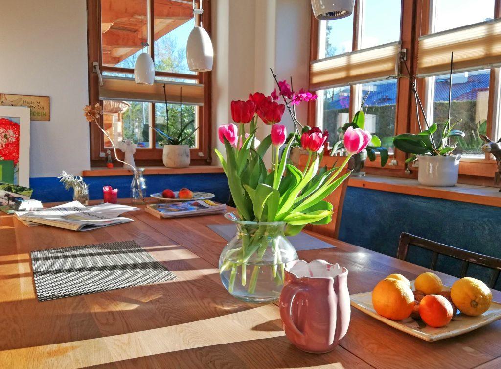 Tulpen machen glücklich während der Coronakrise - Coronakrise Kolumne
