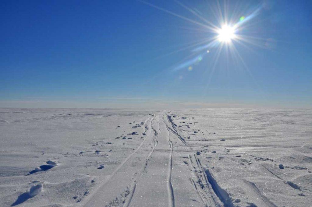 Spuren in der Arktis