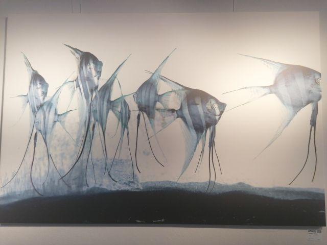 kunst und mehr